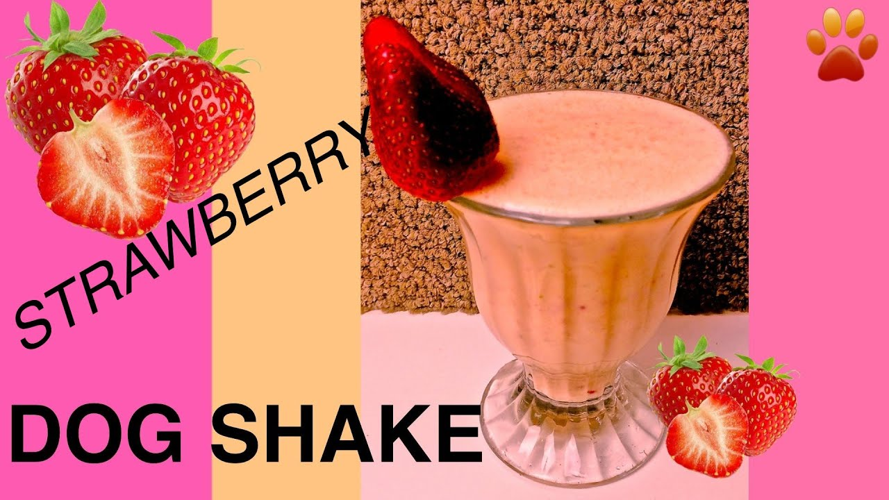 Strawberry Protein Powder Strawberry Banana Protein Dog