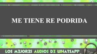 Me Tiene Re Podrida - Conversaciones De Whatsapp - Los Mejores Audios Y Videos Whatsapp
