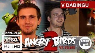 Angry Birds 2 (2019) Vidrail dabuje animák