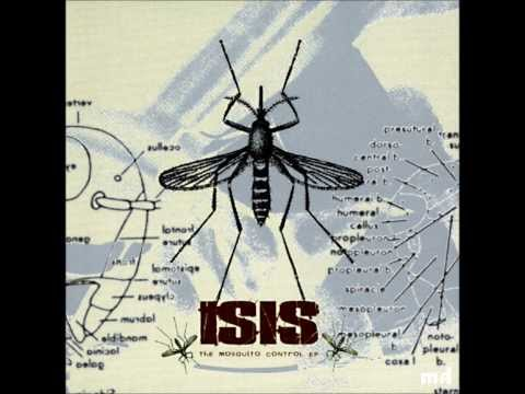 Isis - Life Under The Swatter