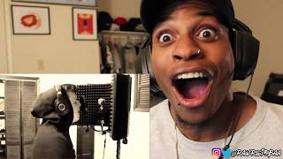 IAMTHEREALAK - 16 YEAR OLD KILLS PANDA REMIX!!!  REACTION!! 🔥🔥