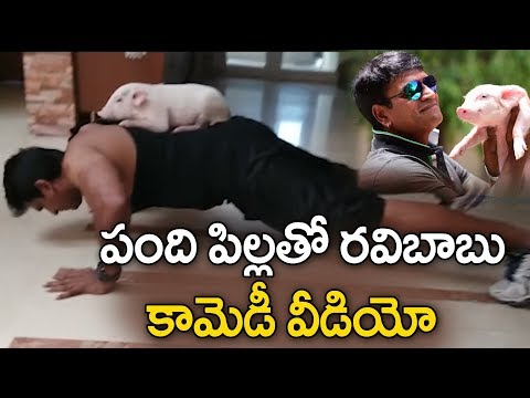 Ravi Babu Funny Workout With Piglet | Adhugo Promotional Video | Tollywood | YOYO Cine Talkies