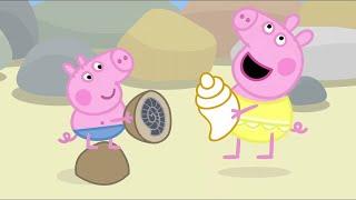 Peppa Pig Full Episodes | Rock Pools  | Cartoons for Children