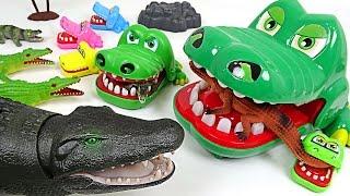 Crocodile family vs Crocodile army! Crocodile super wars!! - DuDuPopTOY
