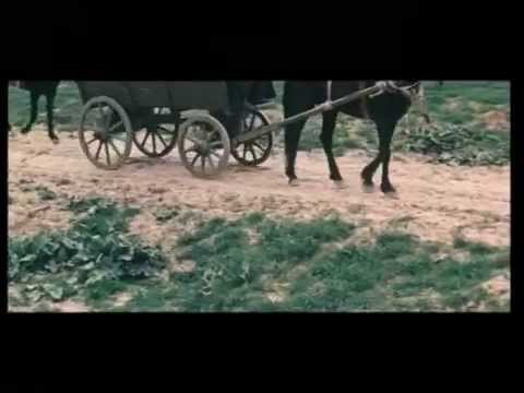 Фильм Золотая голова мстителя