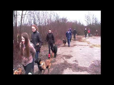 Šunų dresavimo mokykla ''Nuaras'': Pavasaris iš paukščio skrydžio