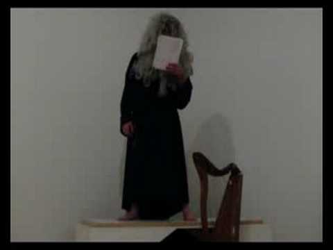 Bedwyr Williams Newlyn Art Gallery Pt 2