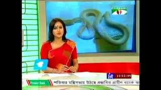 Snake Photography Exhibition | Green Explore Society | SUST | Channel i News