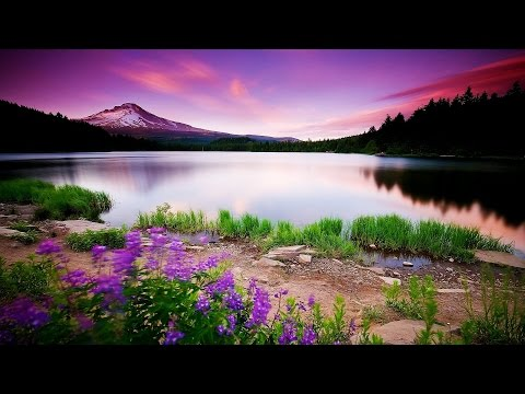 Inner Child Healing Deep Meditation Music Relax Mind Body Expand Your Consciousness