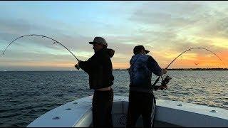 Angeln Auf Segelfisch Mahi Mahi Und Jack Crevalle Topwater Live Bisse