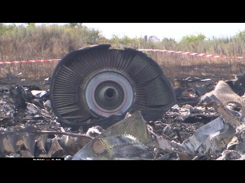 Report: MH17 shot down by Russian-made missile