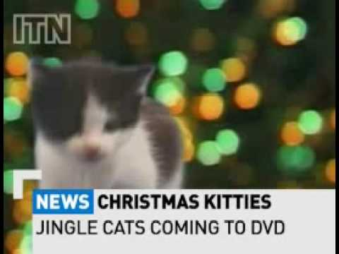 Pussy Cats singing  Jingle Bells