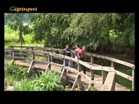 Friuli: primo speciale Dolomiti - Valli Pordenonesi - Magredi - Montagna Leader