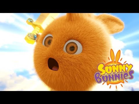 Cartoons for Children   GAMER BUNNIES   SUNNY BUNNIES   Funny Cartoons For Children