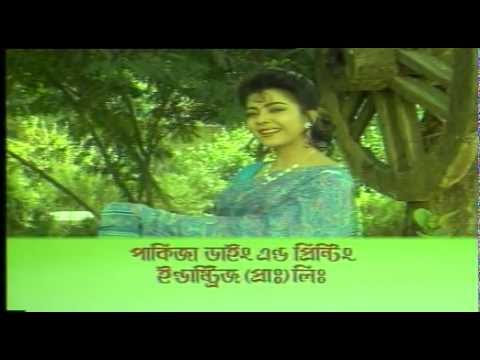 Pakiza Saree