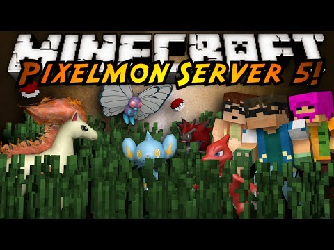 Minecraft Pixelmon Server : PREPPING FOR GYM TWO!