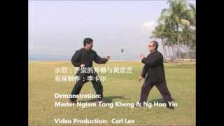 永春白鹤拳实用法门  Yong Chun White Crane Fist Applications