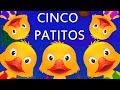 Cinco Patitos poesia Infantil Con Letra – Canciones Infantiles en Espanol  ChuChu TV -