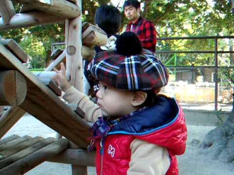 22 11 20  徳山動物園 鳥のふん 035
