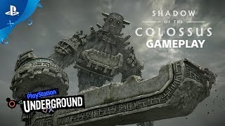 Shadow of the Colossus PS4 Gameplay | PS Underground