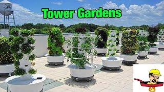 Verticle Gardens - FOOD GARDENING