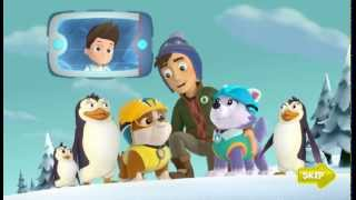 PAW Patrol: Rubble, Skye, Everest