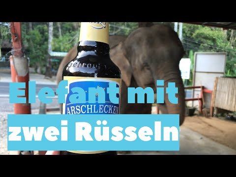 Sepp BUMSINGER und die Schlepplift Elefanten von der Kampenwand (Sonderzüchtung mit 2 Rüsseln !)