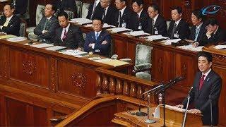 Политический тайфун накрыл Японию