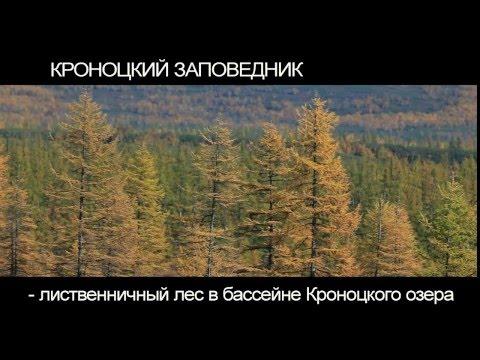 Дикая природа Камчатки - Кроноцкий заповедник