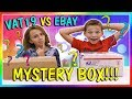 VAT19 VS EBAY MYSTERY BOX OPENNING | We Are The Davises