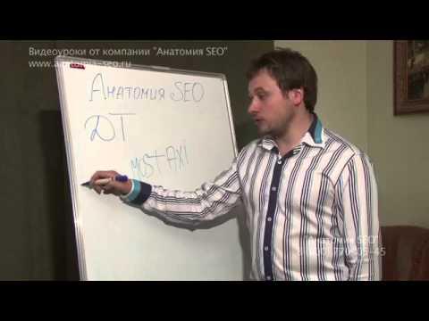 Выбор идеального домена. Курсы по продвижению сайтов Анатомия SEO.