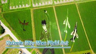 Miyagi Prefecture Kakuda City Rice Field Art | 角田市田んぼアート
