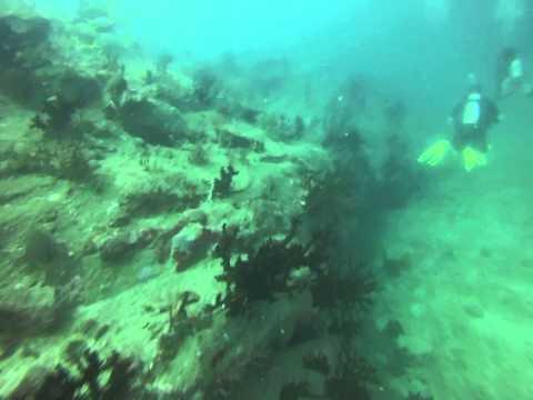 2014 Pulau Payar Marine Park (Malaysia) scuba