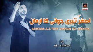 download lagu Noha - Asghar A.s Teri Jawani Ka Arman - gratis