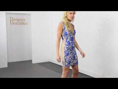 Holt Brie Dress In Blue & Nude