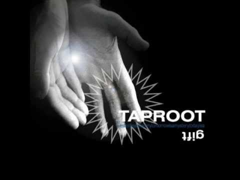 Taproot - Mirror