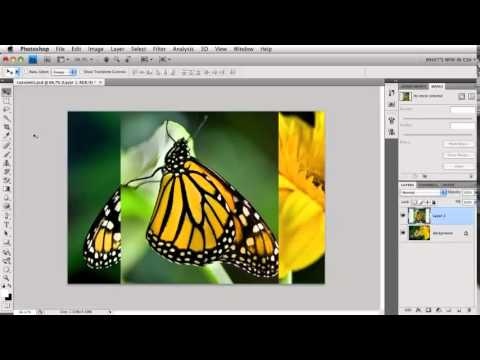 photoshop tutorials,quick tips/amazing/ must watch video