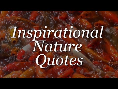 Inspirational Quotes About Nature