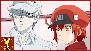 Is Cells At Work The Best Anime of 2018??? | Your Everyday Nerd #002