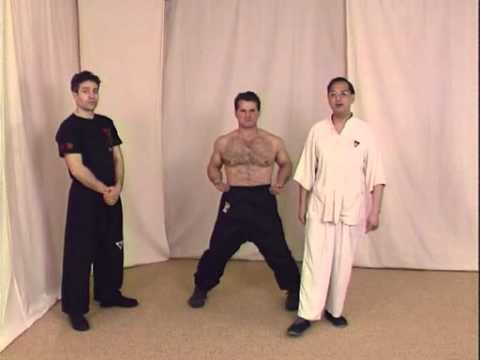 Wing Tsun Kung Fu - Techniques pour dbutant Image 1