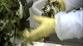 How Its Made Mixed Salad 4x3