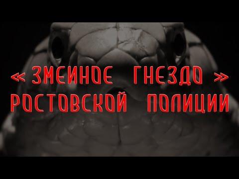 Змеиное гнездо ростовской полиции | Аналитика Юга России