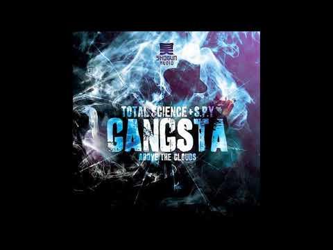 Total Science & S.P.Y. - Gangsta