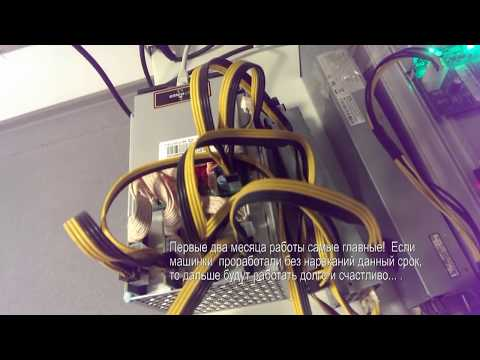 Antminer L3 Litecoin  250MH Scrypt  Стоит ли покупать Asic