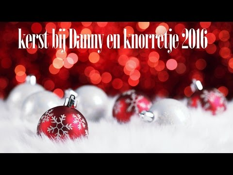 Kerst bij Danny en knorretje 2016 - Doctor Who is in da house!