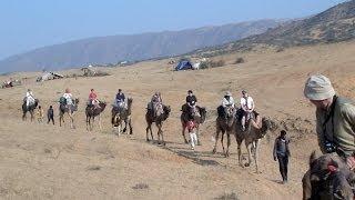 Overnight Camel Safari in Pushkar through the Desert