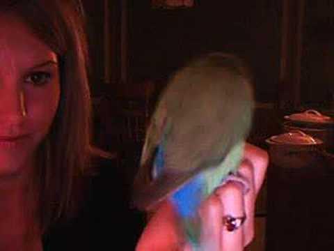 Masterbating Bird Part 2 video