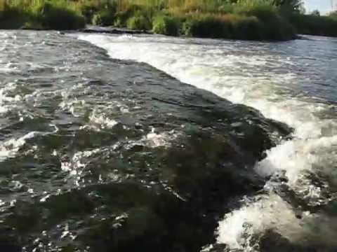 места для рыбалки на которосли
