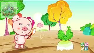 Nhạc phim hoạt hình thiếu nhi #8 by LEY LEY POP KIDS TV
