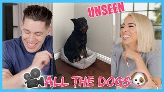The Dog Diaries | Unseen Footage